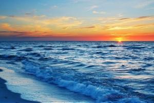 Güneş Yağını
